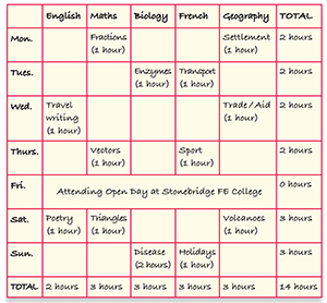 Different strategies organising coursework